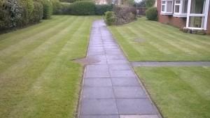 Stockton Gardener - Lawn Mowing