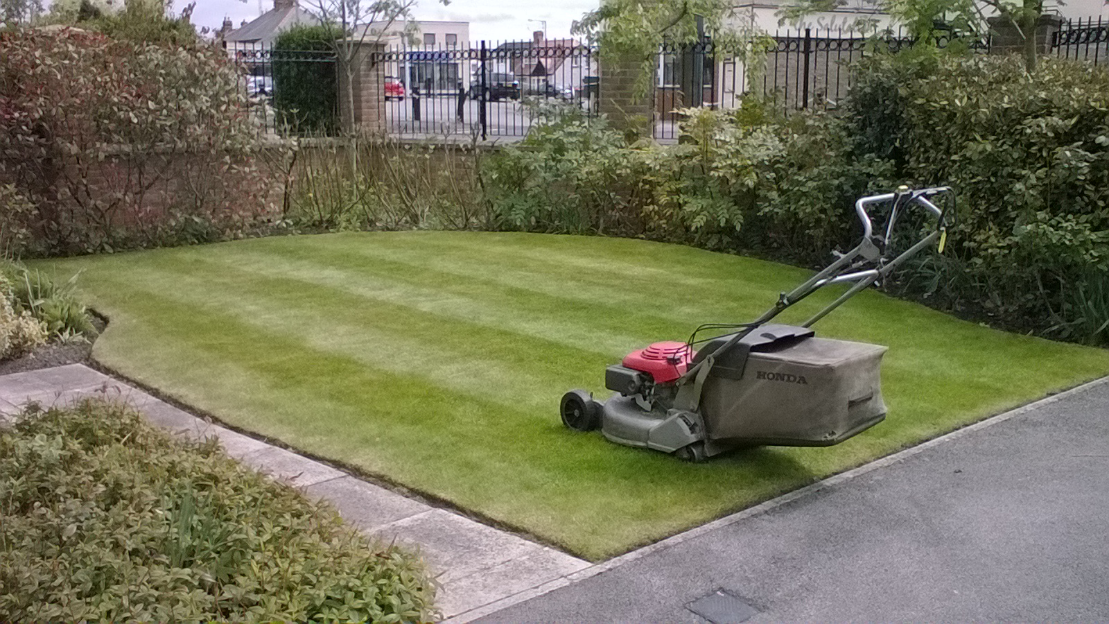 Stockton Gardener - Grass Cutting