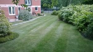Stockton Gardener Lawn Mowing